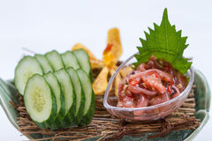 Ika No Shiokara Japanese Squid Fermented Served with Sliced Cucumber in the Iced Bowl Stock Photos