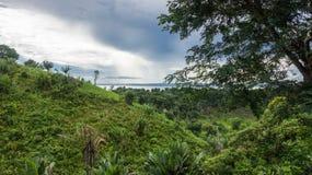 Ikalalao djungel Arkivfoto