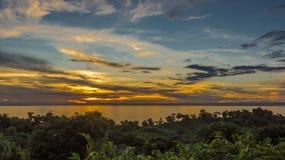 Ikalalao djungel Royaltyfri Fotografi