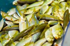 Ikan Kuning Royalty Free Stock Images