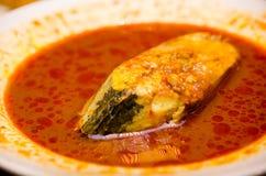 Ikan Tenggiri Asam Pedas Melaka Royalty Free Stock Photography