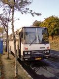 Ikarus 256 bus op Margaret Island in Boedapest royalty-vrije stock foto