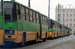 Ikarus buses parade Stock Image