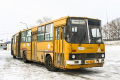 Ikarus 280. CHELYABINSK, RUSSIA - JANUARY 30, 2011: Articulated city bus Ikarus 280 in the city street stock photo