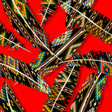 Ikat feather pattern Stock Photography