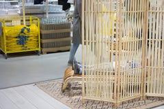 IKEA przechuje w Vilnius Zdjęcie Stock