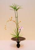 Ikebana расположение цветка Стоковое Изображение