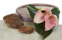 Ikebana Imagens de Stock