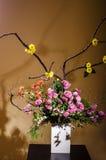 Ikebana 免版税图库摄影