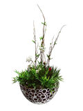 Ikebana Royalty Free Stock Images