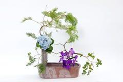 Ikebana asia  flower decoration Stock Image