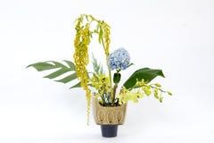 Ikebana asia  flower decoration Stock Photos