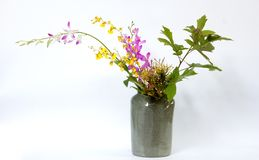 Ikebana asia thai flower decoration Royalty Free Stock Image