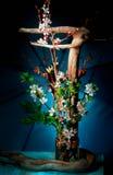 Ikebana auf einem blauen Hintergrund Lizenzfreie Stockfotos
