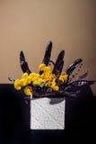 Ikebana avec la sauterelle de miel Photos libres de droits