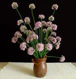 Ikebana 5 Royalty Free Stock Photo