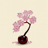 Ikebana. Composition. Figure lush Sakura flower. Against the background  Royalty Free Stock Photos