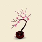 Ikebana. Composition. Figure Sakura flower. Against the background vector illustration