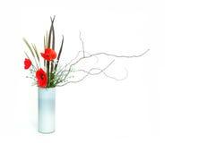 Ikebana del papavero Immagini Stock