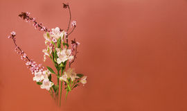 Ikebana Flower Arrangement with Copy Space Stock Photography