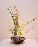 Ikebana. Flower arrangement Royalty Free Stock Image