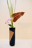 Ikebana. Flower arrangement. Of orchid in the house Stock Photography
