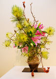 Ikebana. Flower arrangement. Flower arrangement of orchid  and pines branches in the house Royalty Free Stock Photos