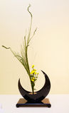 Ikebana. Flower arrangement. Vase in the shape of the Moon Stock Photo