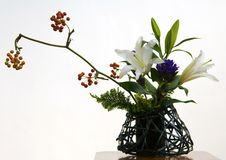 Ikebana III royalty free stock photography