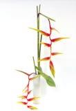 Ikebana kwiatu tajlandzka dekoracja Zdjęcie Stock