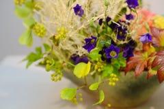 Ikebana Lycklig mors dag! kortbegrepp arkivfoton