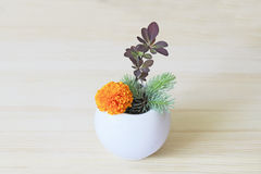 Ikebana with orange flower and branches of blue spruce and barberry in a vase Stock Photography