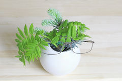 Ikebana with sprigs of spruce, mountain ash and glasses in a white vase Stock Photography