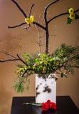 Ikebana Royalty Free Stock Photo