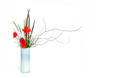 Ikebana van de papaver Stock Afbeeldingen