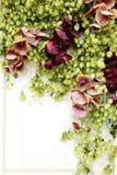 Ikebana von den Blumen und von den Blättern auf Weiß Stockbilder