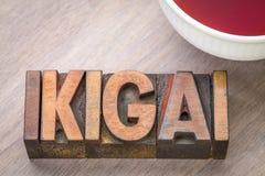 Ikigai - une raison d'être Images stock