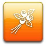 ikona Fotografia Stock