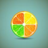 Ikona cytrusa owoc Zdjęcie Royalty Free