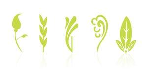 ikona kwiecisty liść ilustracji
