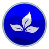 ikona liści, Zdjęcie Royalty Free