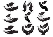 Ikone des Blattes in der Hand Lizenzfreies Stockbild