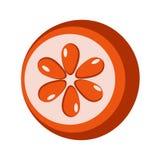 Ikone einer orange Pampelmuse stock abbildung