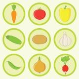 Ikone eingestellt - Gemüse Stockbilder