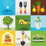 Ikonen arbeiten, Gemüsegarten im Garten, die gefärbte Ebene Stockfotografie