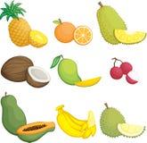 Ikonen der tropischen Früchte lizenzfreie abbildung