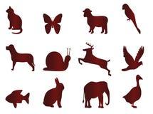Ikonen für Tiere Lizenzfreie Stockbilder