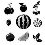 ikonen Fruchtikonen auf weißem Hintergrund Auch im corel abgehobenen Betrag stockbilder