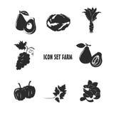 Ikonen-gesetztes Bauernhofdesign Stockbilder