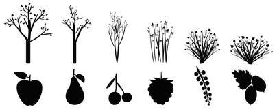 Ikonen von Gartenbäumen, -sträuchen und -frucht Lizenzfreies Stockbild